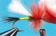 WHILE WE WERE GIVING a recent fly-tying demonstration, one of the people in the audience asked us if we had developed all the tips and tricks we were sharing Beatty Tips, Fly Tying Patterns, Fly Fishing, Outdoors, Fishing, Fly Tying, Outdoor Rooms, Off Grid, Outdoor