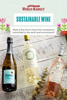 Read about our assortment of quality wine from companies who are committed to the earth and the environment in general, while minimizing waste. #worldmarket #wine Prosecco Doc, World Market, Food Gifts, Outdoor Entertaining, Colorful Decor, Wines, Gift Guide, Sustainability, Environment