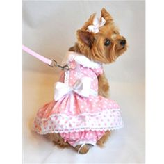Pink Polka Dot & Lace Dog Dress now comes as a complete set, to include panties and a leash and D-Ring.