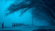 #cold #dark #eerie #fear #fence #fog #foggy #frozen #ice #lake #landscape #mist #mystery #outdoors #pathway #pole #reflection #road #scenic #snow #street #trees #weather #winter