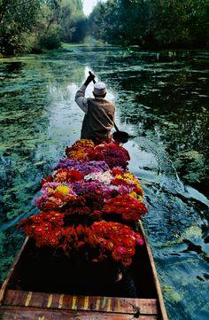 Dal Lake, Srinagar, Kashmir - Steve McCurry