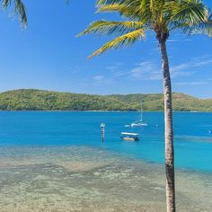 The glass bottom boat tour on its way out to explore some of the marine life and fringing reef.  Another way to experience the reef without getting wet! #daydreamisland #lovewhitsundays #thisisqueensland by daydreamislandresortandspa http://ift.tt/1UokkV2