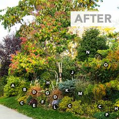 lettered vignette of garden