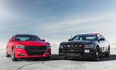 2015 Dodge Charger Pursuit V-8 AWD Police Vehicles, Emergency Vehicles, Police Cars, 2015 Dodge Charger, Dodge Chargers, Car And Driver, Fire Trucks, Mopar, Picture Photo