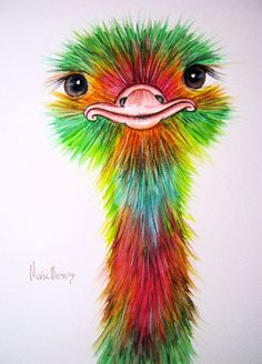 1000+ images about Ostrich Art on Pinterest
