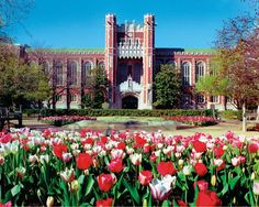 Bizzell Memorial Library on The University of Oklahoma Campus | Norman, Okla.