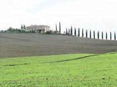 Siena - landscape
