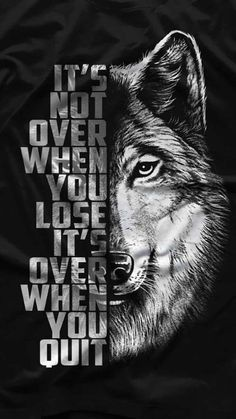Wolf pack  wallpaper by GodofWarpath - fec8 - Free on ZEDGE™