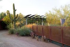 Dig the fence and the shade structure that works for modern and traditional homes with desert gardens.