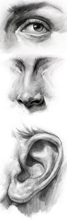 Delineate Your Lips - 111 Insanely Creative Cool Things to Draw Today - How to draw lips correctly? The first thing to keep in mind is the shape of your lips: if they are thin or thick and if you have the M (or heart) pronounced or barely suggested. Pencil Art Drawings, Art Drawings Sketches, Cool Drawings, Charcoal Drawings, Drawing Faces, Contour Drawings, Mouth Drawing, Detailed Drawings, Realistic Drawings
