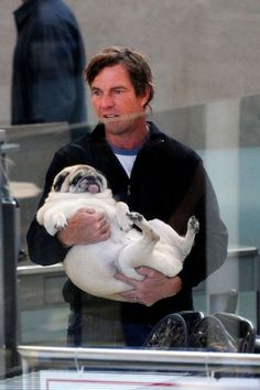 Celebrities with pugs. This pug is way too fat! Not healthy for pugs to be fat, they can't breath! Cute Pugs, Cute Puppies, Dogs And Puppies, Doggies, Funny Pugs, Chihuahua Dogs, Pet Dogs, Fat Pug, Amor Pug