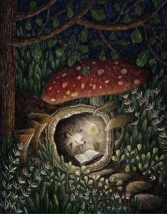 """Monday Matticchio ~ """"Animals as an endless source of creative inspiration. An exploration of the finest in art, illustration, crafts and design from around the world featuring animals, both real and fantastic."""" ~ Drawing by Franco Matticchio Illustration Mignonne, Children's Book Illustration, Illustration Children, Hedgehog Illustration, Book Illustrations, Forest Illustration, Illustration Pictures, Fantasy Kunst, Fantasy Art"""