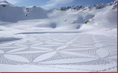 snow designs