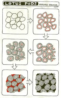 Enthusiastic Artist: LOTUS PODS tangle instructions