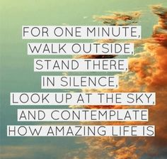 Breathe in #acceptance......breathe out #Gratitude xxx For one minute, walk outside, stand there in silence, look up at the sky, and contemplate how amazing life is. #quote