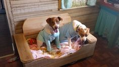 Recycled wood doggie bed
