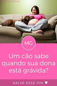Gravidez e animais | Um cão sabe quando sua dona está grávida?