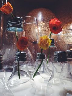 Poppies and lightbulb vases, what a combo x
