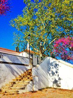 Senhora da Piedade @ Tomar, Portugal