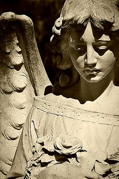 Stone Angel Gazing Down Cemetery Angels, Cemetery Statues, Cemetery Art, Angel Statues, Old Cemeteries, Graveyards, Ange Demon, Stone Statues, Angels Among Us