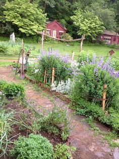 Charming garden