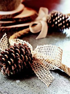 Fall table garland! Use heavy-gauge, gold wire to attach pinecones to rope. Tie a bow made from coarsely woven hemp or cotton ribbon around the rope at the top of each pinecone to hide the wire. (Optional: Add a little glitter to the pinecones before assembling the garland to catch the light.) Tip: Reuse this garland for Christmas by swapping out the neutral bows for red or green ones.