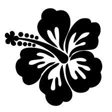 Resultado de imagem para flor de hibisco