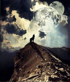Él lobo solitario empezó a ver obscura la noche... Cuando descubrió que la luna no solo brillaba para el.