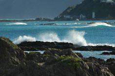 Island Bay, Wellington, New Zealand