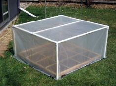 PVC pipe and plastic sheeting DIY greenhouse.