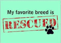 Rescued <3