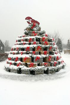 Lobster Trap Christmas Tree in the snow, Maine. By Lori Davis Photography.