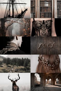"""skcgsra: """"a song of ice and fire: house baratheon """"""""ours is the fury"""" """" Witch Aesthetic, Book Aesthetic, Aesthetic Collage, Character Aesthetic, Aesthetic Pictures, Foto Fantasy, Fantasy World, Dark Fantasy, Fantasy Art"""