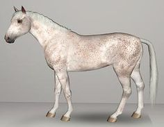 Mod The Sims - Fleabitten Grey Sims 3, See Games, Electronic Art, Fleas, Charlotte, Horses, Grey, Horse, Gray