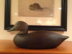 Black Duck - Joe Lincoln style.