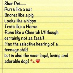 #love #sharpei #dogs #likeapig #nothearing