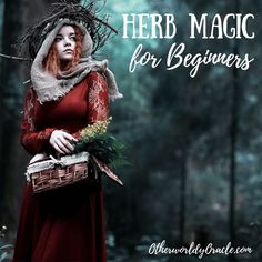 to start working with herbs in your practice? Here we break down the essential first steps in herb magic for beginners. Want to start working with herbs in your practice Here we break down the essential first steps in herb magic for beginners Green Witchcraft, Wicca Witchcraft, Wiccan Rituals, Magic Herbs, Herbal Magic, Witch Herbs, Witchcraft For Beginners, Eclectic Witch, Hedge Witch