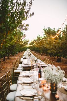 #outdoor-dinner-party  Photography: Mary Margaret Smith - www.marymargaretsmith.com  Read More: http://www.stylemepretty.com/2014/09/10/alabama-fall-orchard-wedding/
