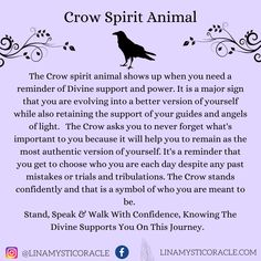 Animal Meanings, Animal Symbolism, Symbols And Meanings, Crow Meaning, Spirit Meaning, Crow Spirit Animal, Animal Spirit Guides, Libra, Curious Facts