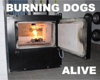 Stop Burning Dogs Alive at Ohio Shelter  PLEASE READ AND SHARE.  This makes me sick.  Talk about abuse.