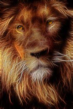 Portrait of a Lion by KarmeticPeace.deviantart.com on @DeviantArt