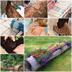 Do you have some old logs that were cut from trees? Here is a super cool idea to turn them into awesome garden planters. These wooden log planters look very original and enhance the overall beauty of your garden. You can plant some colorful flowers in them. Depending on what's …