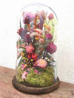Aunt Linda's flowers Diy Flowers, Pretty Flowers, Flower Pots, Cloche Decor, Flower Factory, Dried Flower Wreaths, Fleurs Diy, Dried Flower Arrangements, Deco Floral