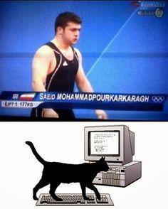 Funny Cat Walking Keyboard