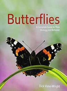 """""""Butterflies: a complete guide to their biology and behavior"""" QL542 .V36 2015"""