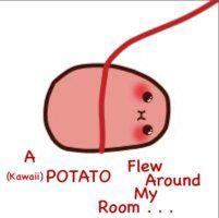 "I'm shaking from ""it's-too-kawaii-for-me"" syndrome Potato Meme, Potato Funny, Cute Potato, Kawaii Disney, Kawii Potato, Kawaii Couple, Potato Drawing, Alex Ramos, Tiny Potato"