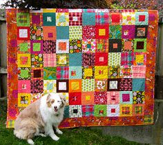 Bright and beautiful scrappy quilt shown with the equally beautiful quilter.......no? The quilter's beautiful dog!