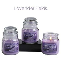 Hosley Lavender Fields Scented Jar Candle Bath And Body Works 2.65 Oz, Set Of 3 | Home & Garden, Home Décor, Candles | eBay!