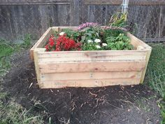 1000 images about pallet idea on pinterest pallets for Flower beds out of pallets