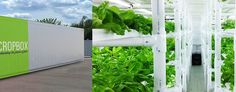This new shipping container based farming system was designed to make small-scale farming competitive in an industrial farm economy.